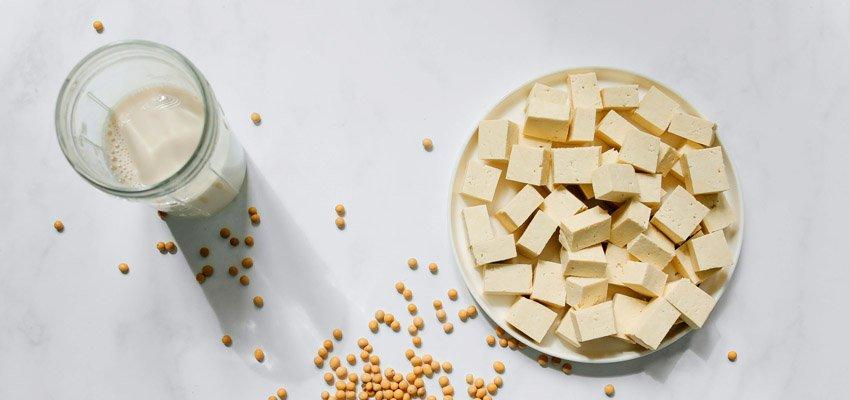 Tofu Caseiro