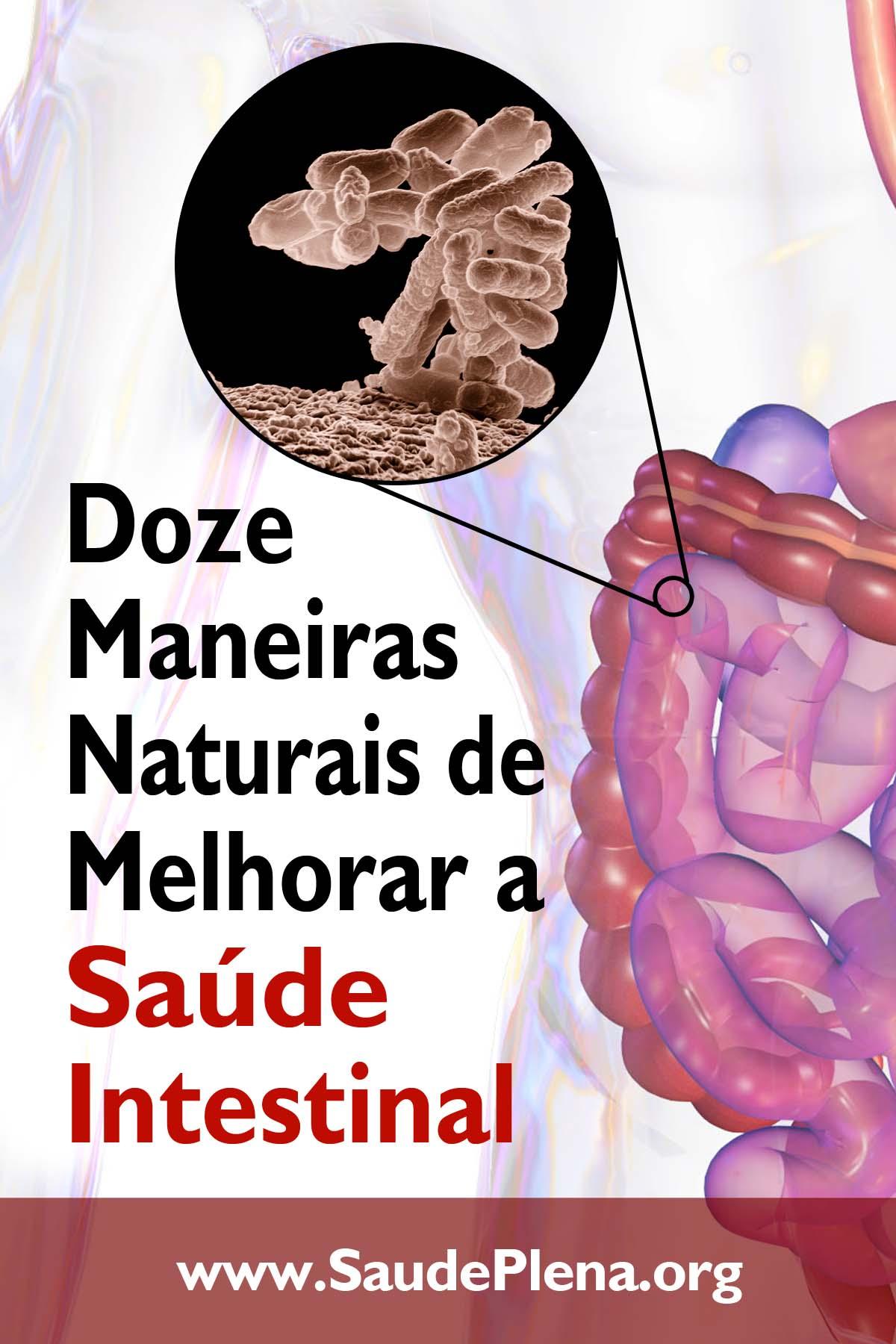 Doze Maneiras Naturais de Melhorar a Saúde Intestinal